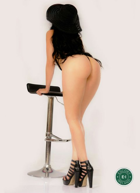 South america escorts South America Independent Escorts and Escort Agencies