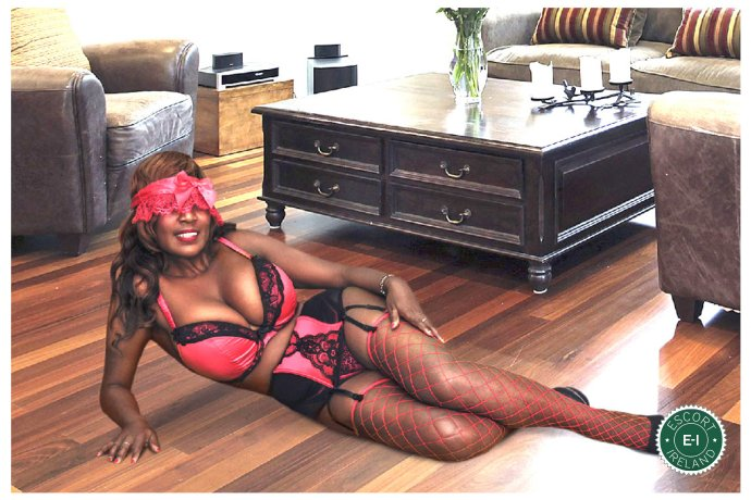 Book a meeting with Sexy Luzia in Castlebar today