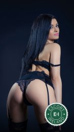 Meet the beautiful Luisa in Dublin 15  with just one phone call