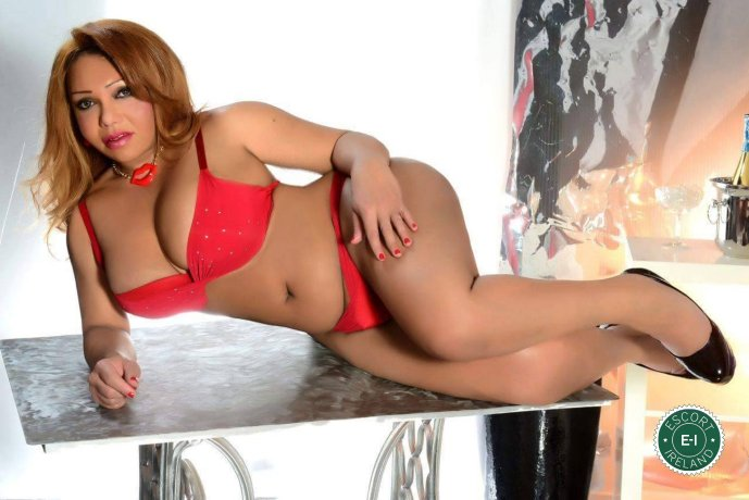 Adriana Gomes TS is a sexy Brazilian escort in Cork City, Cork