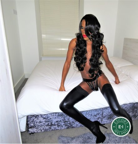 Shemale Deezer TV is a hot and horny South African Escort from