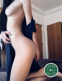 Meet the beautiful Tasha in Dublin 1  with just one phone call
