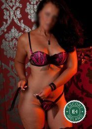 Monica Madrid is one of the much loved massage providers in Dublin 18. Ring up and make a booking right away.