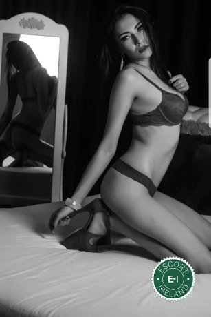 Book a meeting with Anais in New Ross today