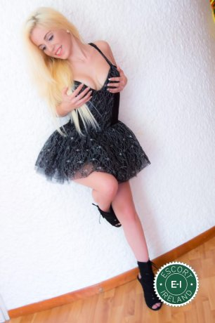 Spend some time with Sasha  in Navan; you won't regret it