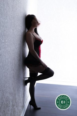 Carolyne  is a hot and horny Dutch escort from New Ross, Wexford