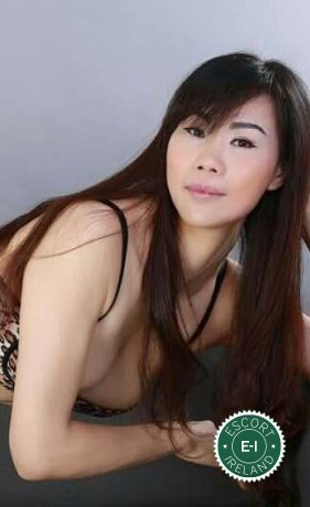 Sexy Wendy is a hot and horny Chinese escort from Dundalk, Louth