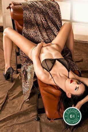 Lavinia is a hot and horny Italian escort from Longford Town, Longford