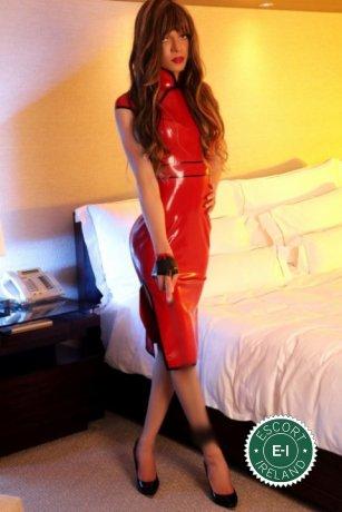 TV Arielle is a sexy Brazilian escort in Dublin 18, Dublin