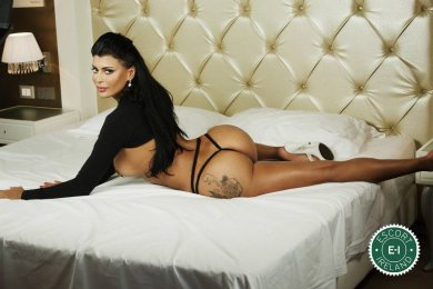 Meet TS Sexy Victoria  in Dublin 3 right now!