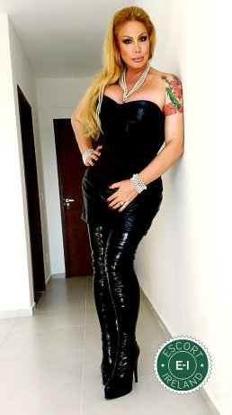 Book a meeting with TS Brigitte Von Bombom in Dublin 1 today