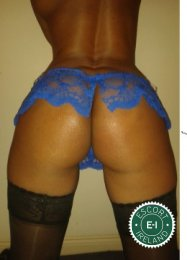 The massage providers in Ennis are superb, and New Sensual Massage is near the top of that list. Be a devil and meet them today.