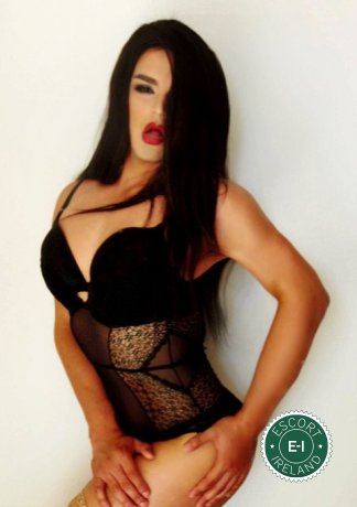 Astrid Carolina Morroe TV is a hot and horny Caribbean escort from Dundalk, Louth