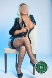 Spend some time with Great Kamilla in Dublin 1; you won't regret it