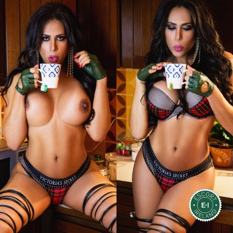 Book a meeting with TS Aysha Garbatelli in Dublin 3 today
