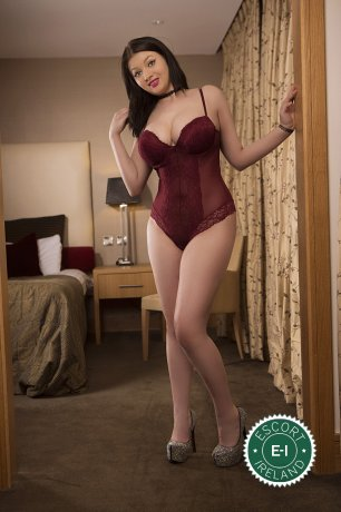 Meet the beautiful Sasha in Dublin 7  with just one phone call