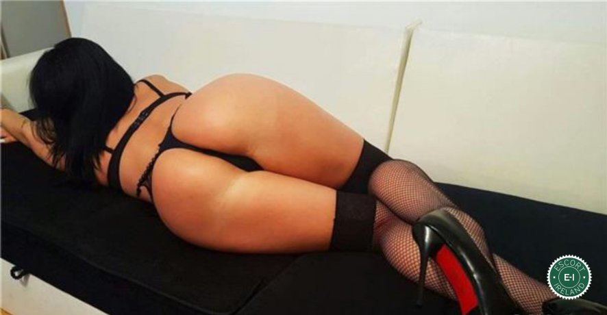 Rose is a hot and horny Spanish escort from Dublin 9, Dublin