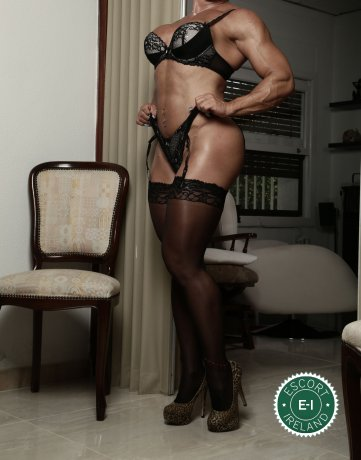 Meet the beautiful Rene in Dublin 6  with just one phone call