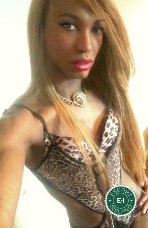 Black Panther Michelley TV is a sexy Puerto Rican escort in Dublin 1, Dublin