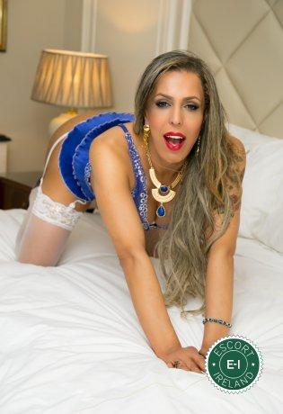 Fernanda Kheller TS is a very popular Brazilian escort in Dublin 2, Dublin