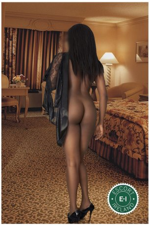 Ebony Beauty is a super sexy Caribbean escort in Limerick City, Limerick