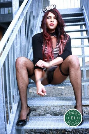TV Natasha Thunder   is a super sexy Brazilian escort in Cavan Town, Cavan