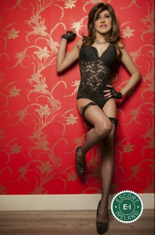 TV Mara is a hot and horny Brazilian escort from Drogheda, Louth