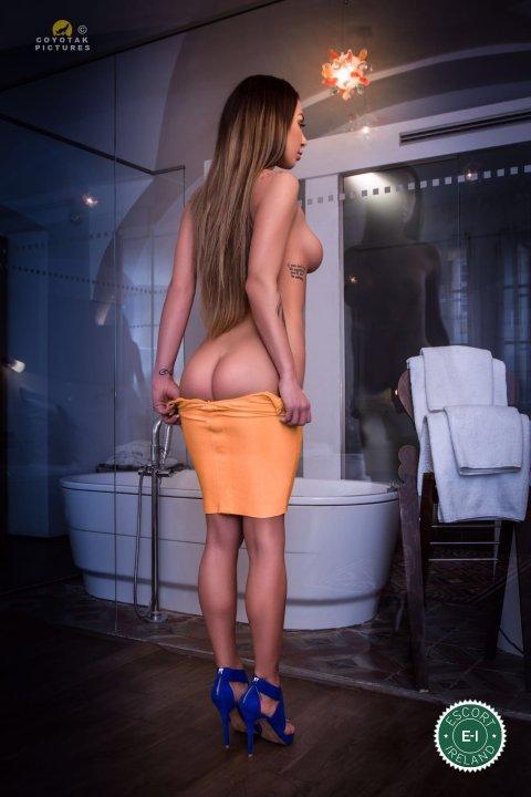 czech porn escort escorts norway