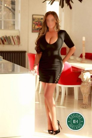 SophieX is a sexy English escort in Wexford Town, Wexford