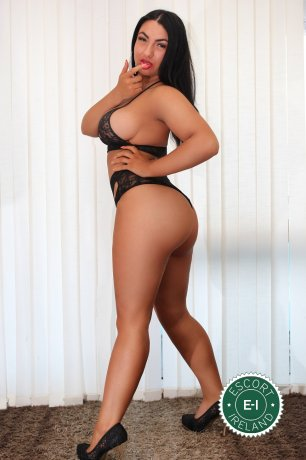 The massage providers in Dublin 9 are superb, and Alessia  is near the top of that list. Be a devil and meet them today.