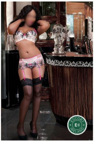 Book a meeting with Honey Julia in Dundalk today