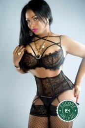 Book a meeting with TS Alexandra  in Limerick City today