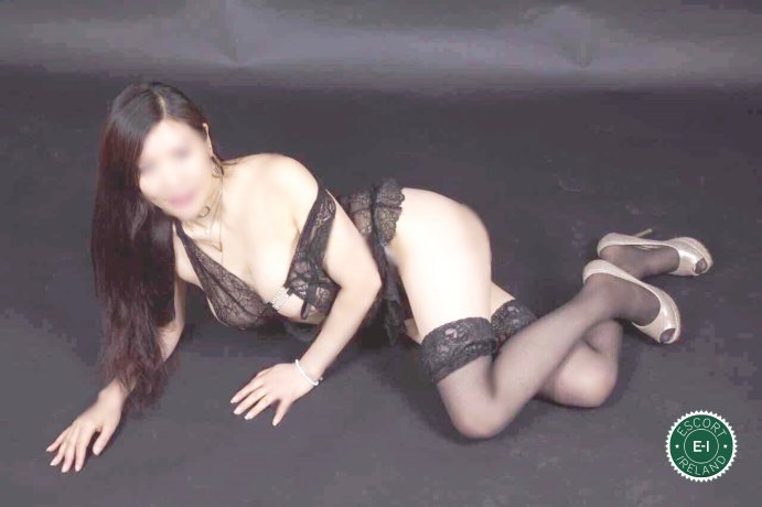 Sasha is a hot and horny Chinese escort from Cork City, Cork