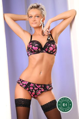 Book a meeting with Nikol in Dublin 22 today