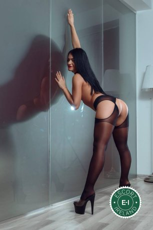 Book a meeting with Cecilia in Limerick City today