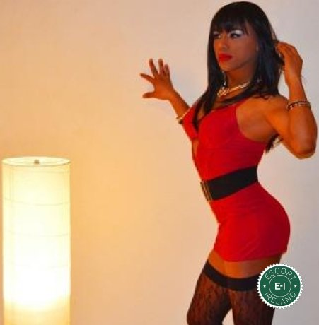 TV Kelly is a hot and horny Brazilian escort from Dublin 1, Dublin