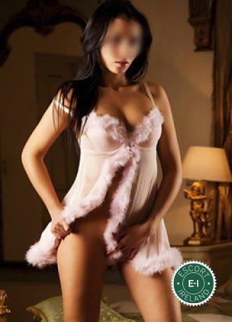 Angel is a sexy English escort in Kilkenny City, Kilkenny