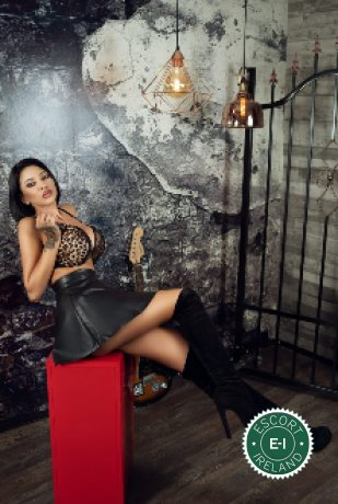 Party Queen Amber is a super sexy Spanish Escort in Dublin 2