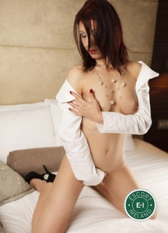 Luizza  is a hot and horny Italian escort from Tullamore, Offaly
