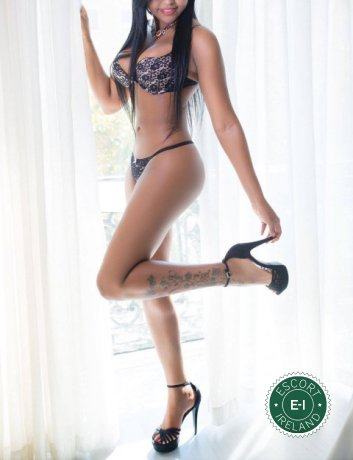 Chelsea is a sexy Colombian escort in Drogheda, Louth