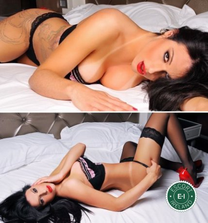 Book a meeting with TS Brenda in Dublin 8 today